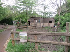 Mudchute Park and Farm in London